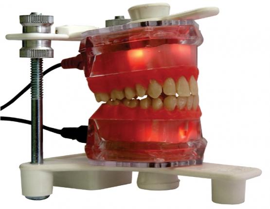 Electronic Typodont